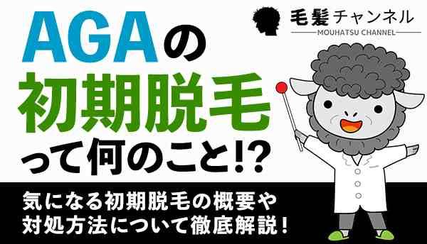 AGA_初期脱毛の画像